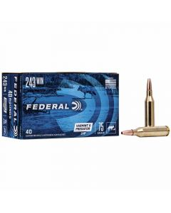 Federal 243 Win 75GR Jacketed Hollow Point 3375FPS American Eagle - 40 Pack